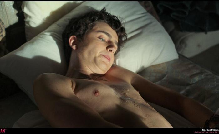 Chalamet call me by your name d6940e81 infobox 69ee531e featured