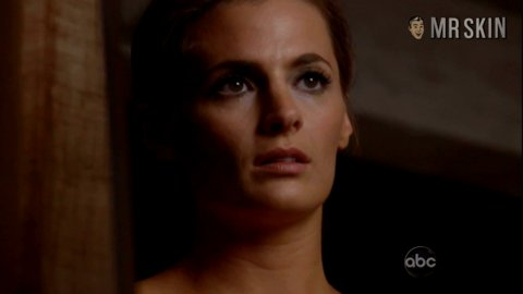 Thanks you stana katic in the nude apologise that