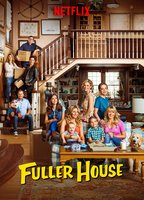 Fuller house 2be32380 boxcover